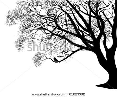 stock-vector-bird-on-a-tree-branch-61023382